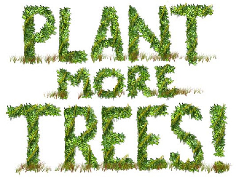 essays on plant trees save environment