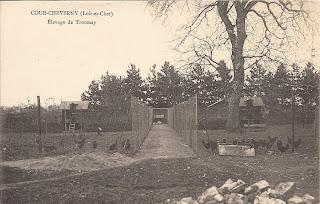 Elevage du château de Troussay - Cheverny