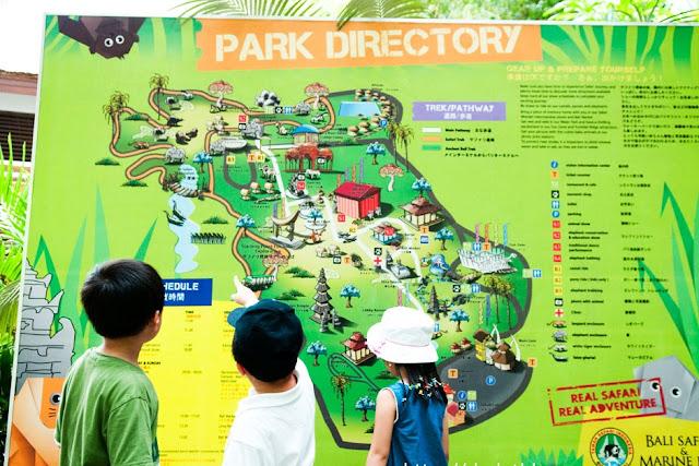 things to do in bali at Bali Safari & Marine Park 2