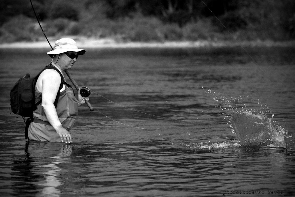 Fishing in croatia and in the neighbourhood asp fly fishing for Fishing in croatia