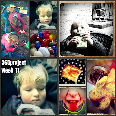 FiveGoBlogging 365project Week 11