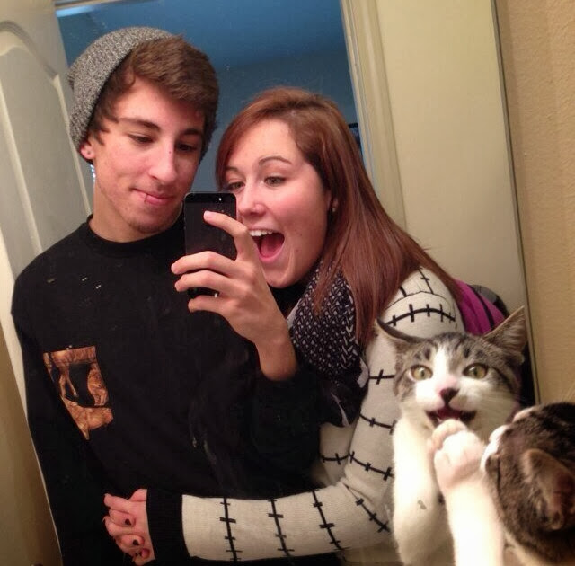 Funny cats - part 83 (40 pics + 10 gifs), cat pics, cat photobombs couple