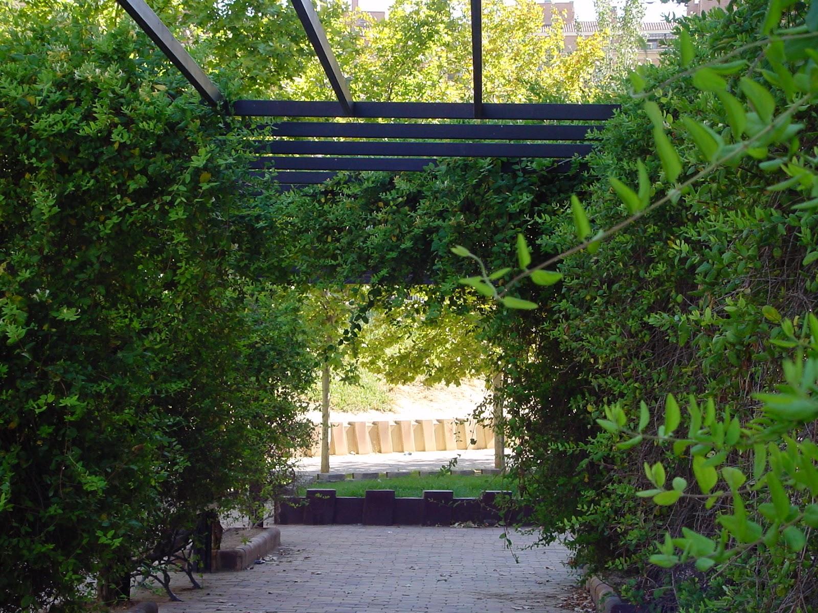 Jardineria eladio nonay jardiner a eladio nonay p rgolas for Pergolas de hierro para jardin