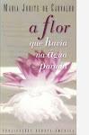 Maria Judite de Carvalho