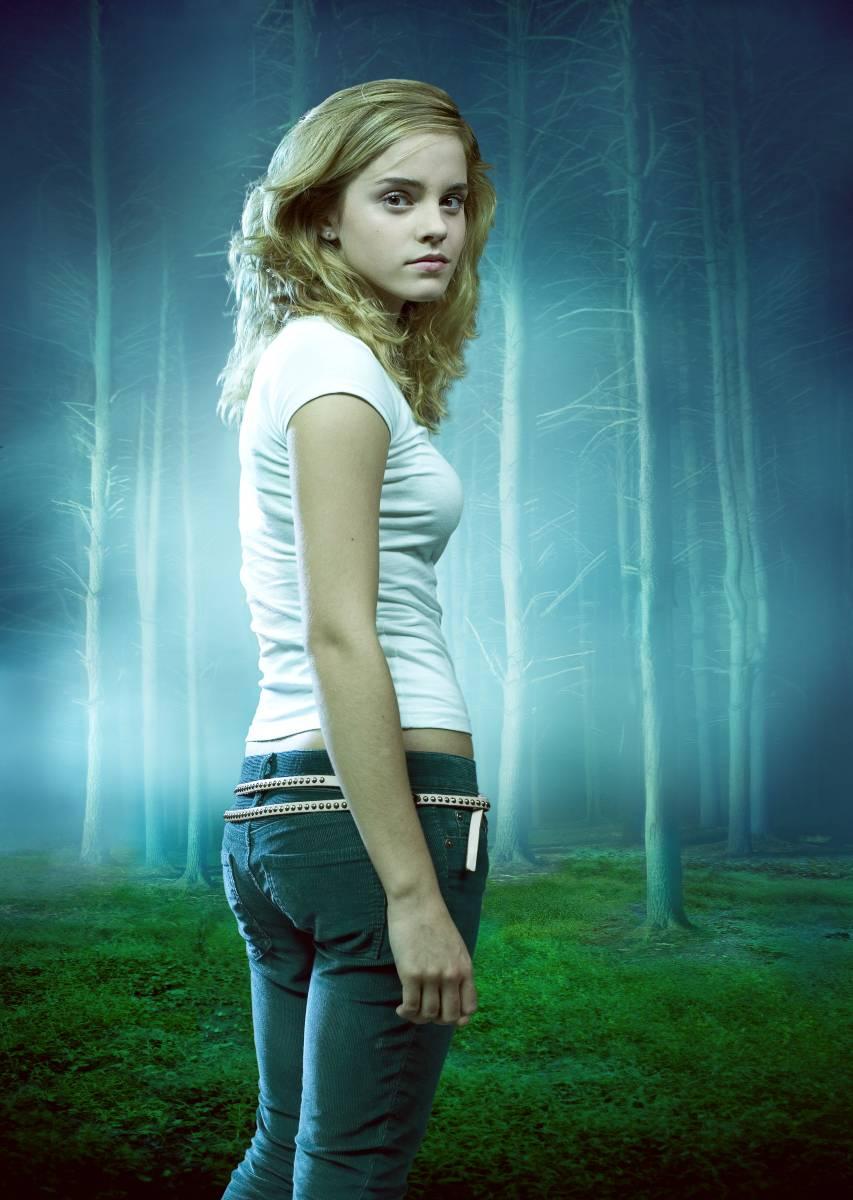 potter hermione granger panties Harry