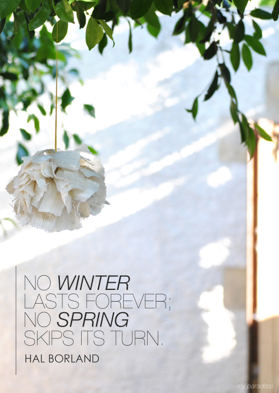No winter lasts forever; no spring skips its turn