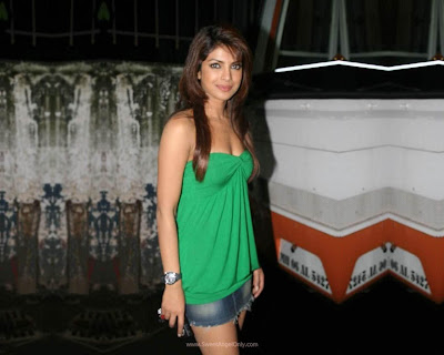 Priyanka Chopra Bollywood 2012 Don 2 Movie Wallpaper