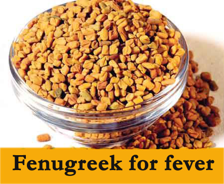 fenugreek an excellent home remedy for fever