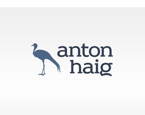 Anton Haig Identity / Logo