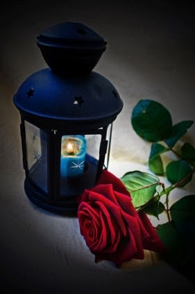 Red Rose With Candle wallpapers