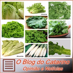 Os vegetais verdes no combate ao diabetes.
