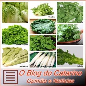 Os vegetais verdes no combate ao diabetes.