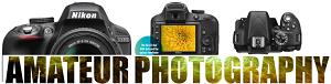 Nikon D31000
