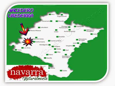 El Turismo Rural en España es un nicho que cada año tiene una mayor demanda dentro de la población española.  Las causas son varias. Primero por cuestiones económicas. Hacer turismo en el medio rural, es más cómodo y sobretodo, más barato.  Al contrario del turismo de sol y playa, que es más estacional y limitado solamente en la época veraniega, el T. Rural, permite realizarlo en muchas más épocas del año, en casi todas las CCAA de España.  Los usuarios de Turismo Rural, tiene unas preferencias especificas a la hora de elegir a que parte y que alojamientos van elegir es sus escapadas.