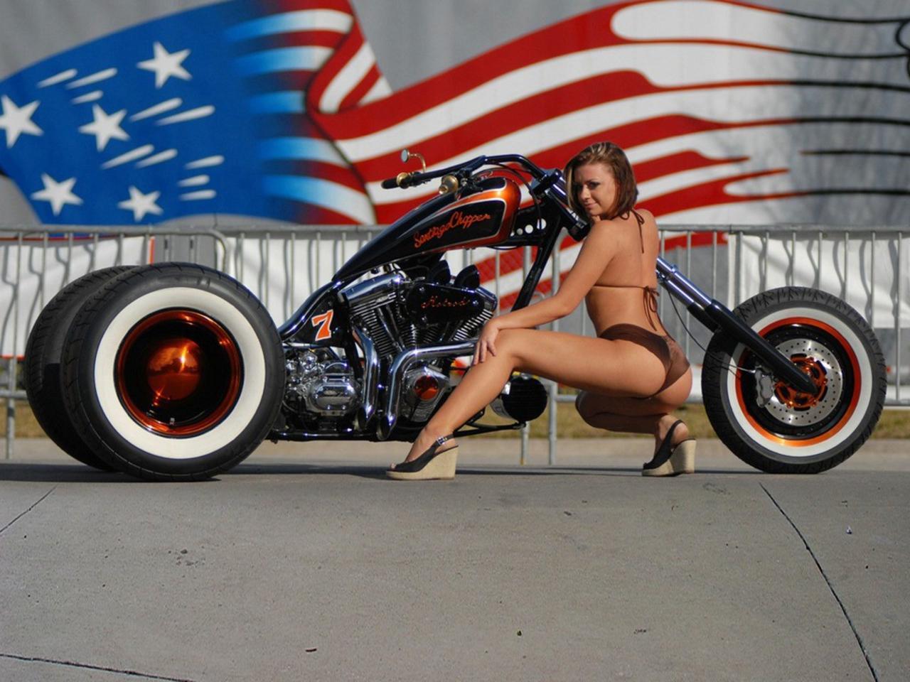 American Chopper Sexy Girl Harley Davidson