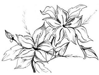 Desenhos Para Colori Flores lindas    desenhar