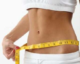 diet yang benar dan menyehatkan