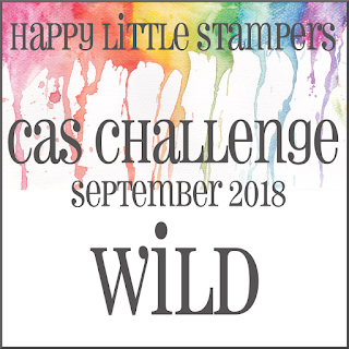 HLS September CAS Challenge
