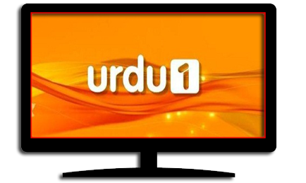 Watch Live Urdu 1 Tv Channel Online Streaming