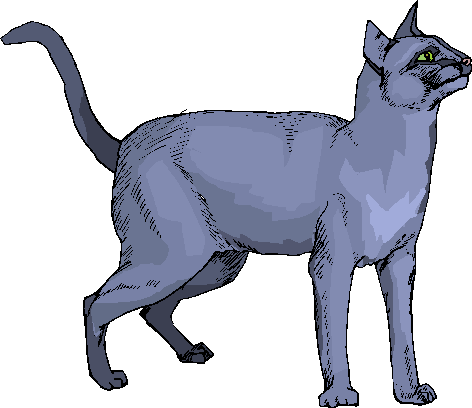 Blue Cat Standing Free Animal Clipart