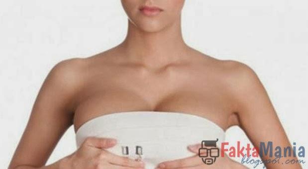5 Wanita Dengan Implan Payudara Terbesar di Dunia