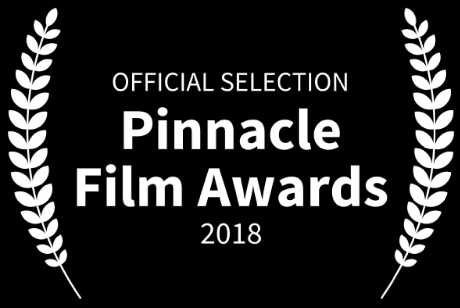 Pinnacle Film Awards Official Selection For Best Screenplay - Dual Mania