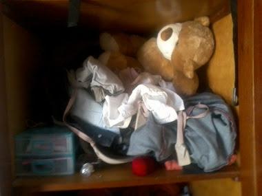 Organizando Guarda roupas