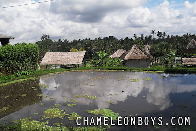 Ubud - Bali Indonesia