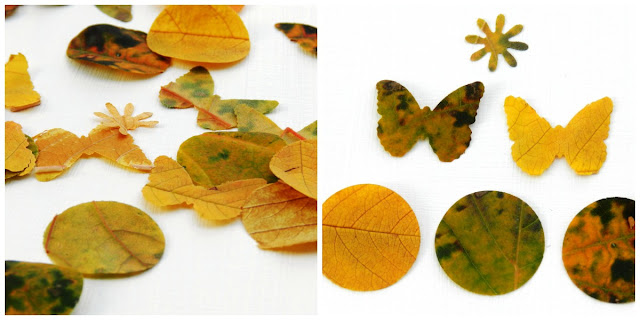 dried leaf shapes