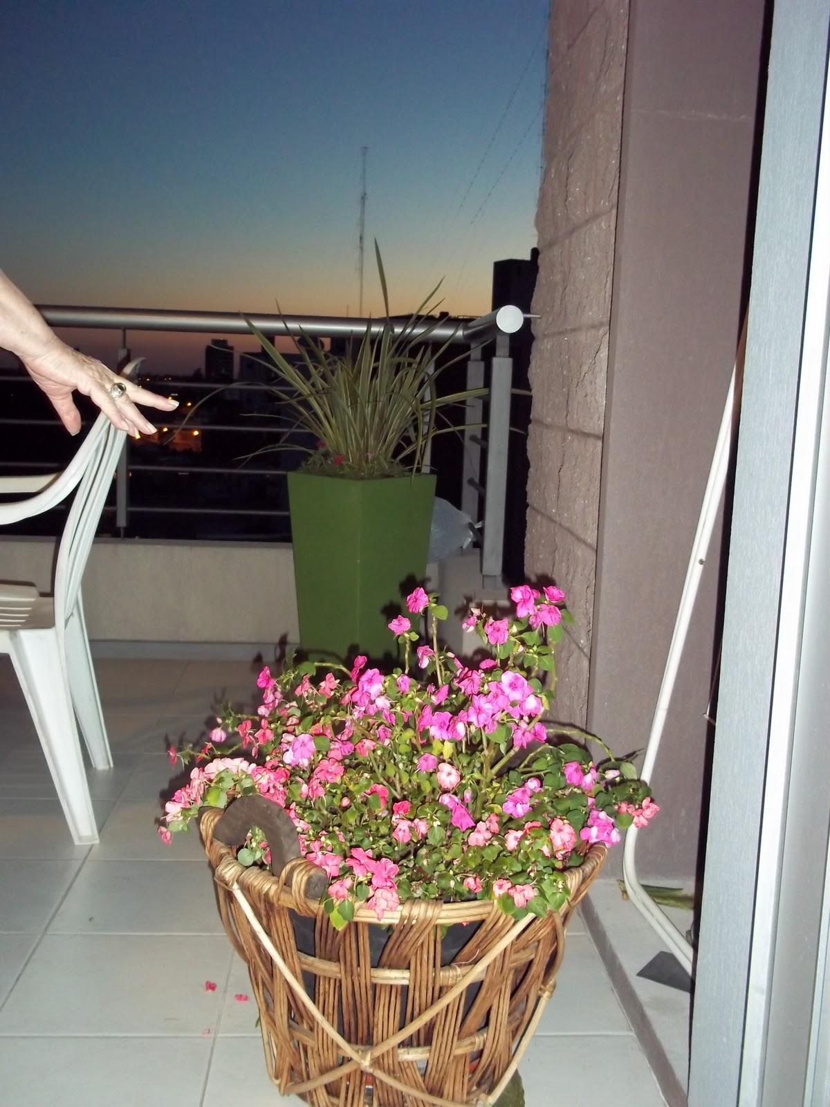 Gabriela genolet macetas para balc n for Macetas para balcon
