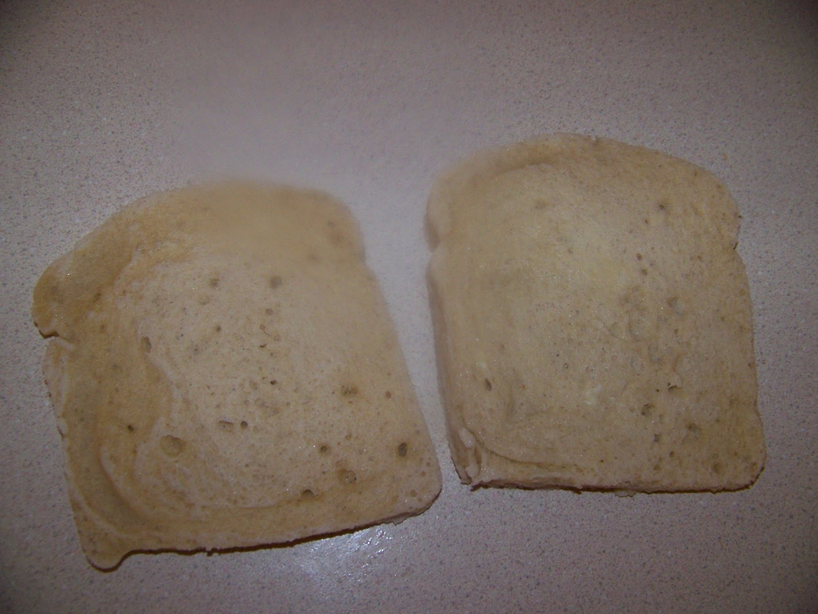Ginny S Low Carb Kitchen 2 Minute Sandwich Bread