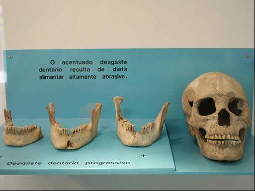 Museu de Sambaqui