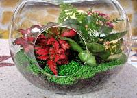 Plantas y flores jardines en botella for Piedrecillas para jardin