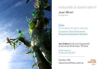 veranoeterno_instalación_2011