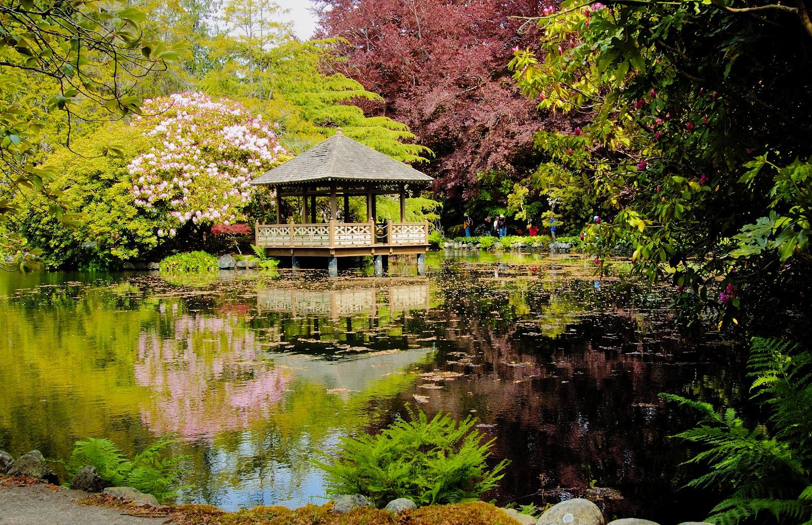 Jardines feng shui c mo dise ar tu jard n feng shui for Disenar jardines online gratis