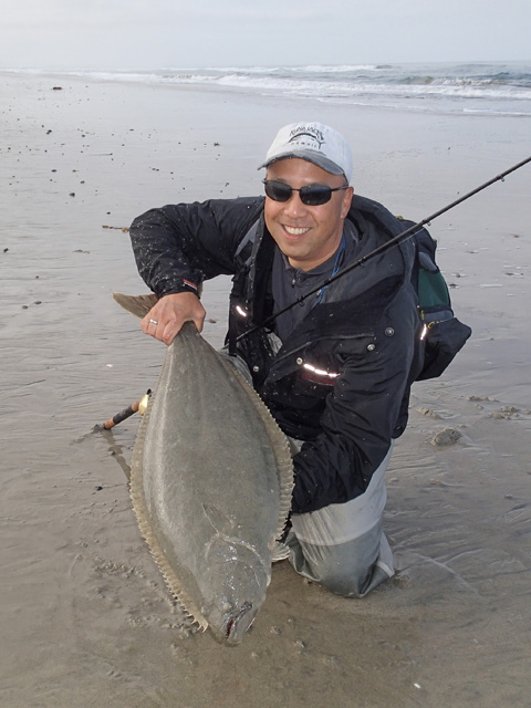 California halibut fish for Surf fishing southern california