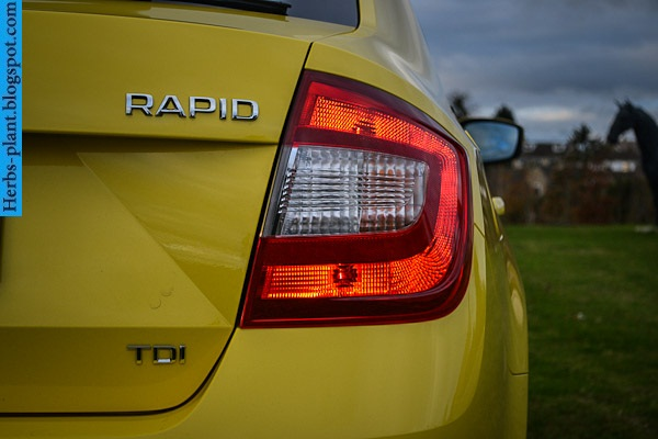 Skoda rapid car 2013 logo - صور شعار سيارة سكودا رابيد 2013