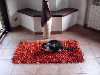 Distribuzione e vendita online tappeti e arredamento tessile ...