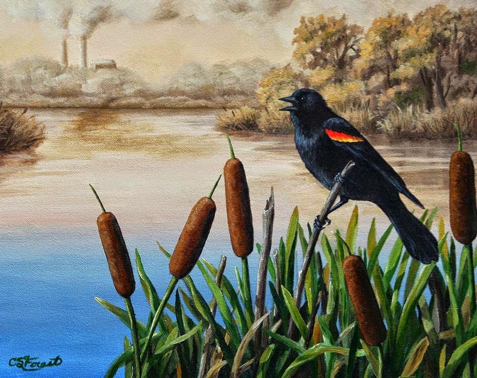 pinturas-de-aves-decorativas