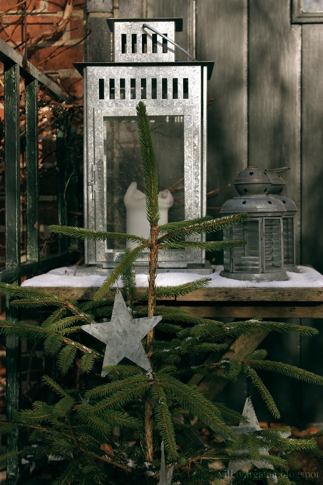 Villa vÅrgatan: adventsfint i trädgården