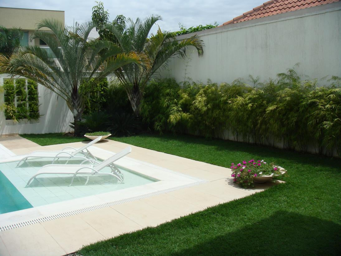Arist teles queiroz ideias de decora o para a rea da for Plantas para piscinas