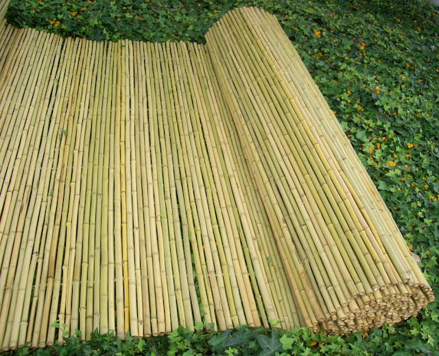 Bamboo Privacy Fencing5