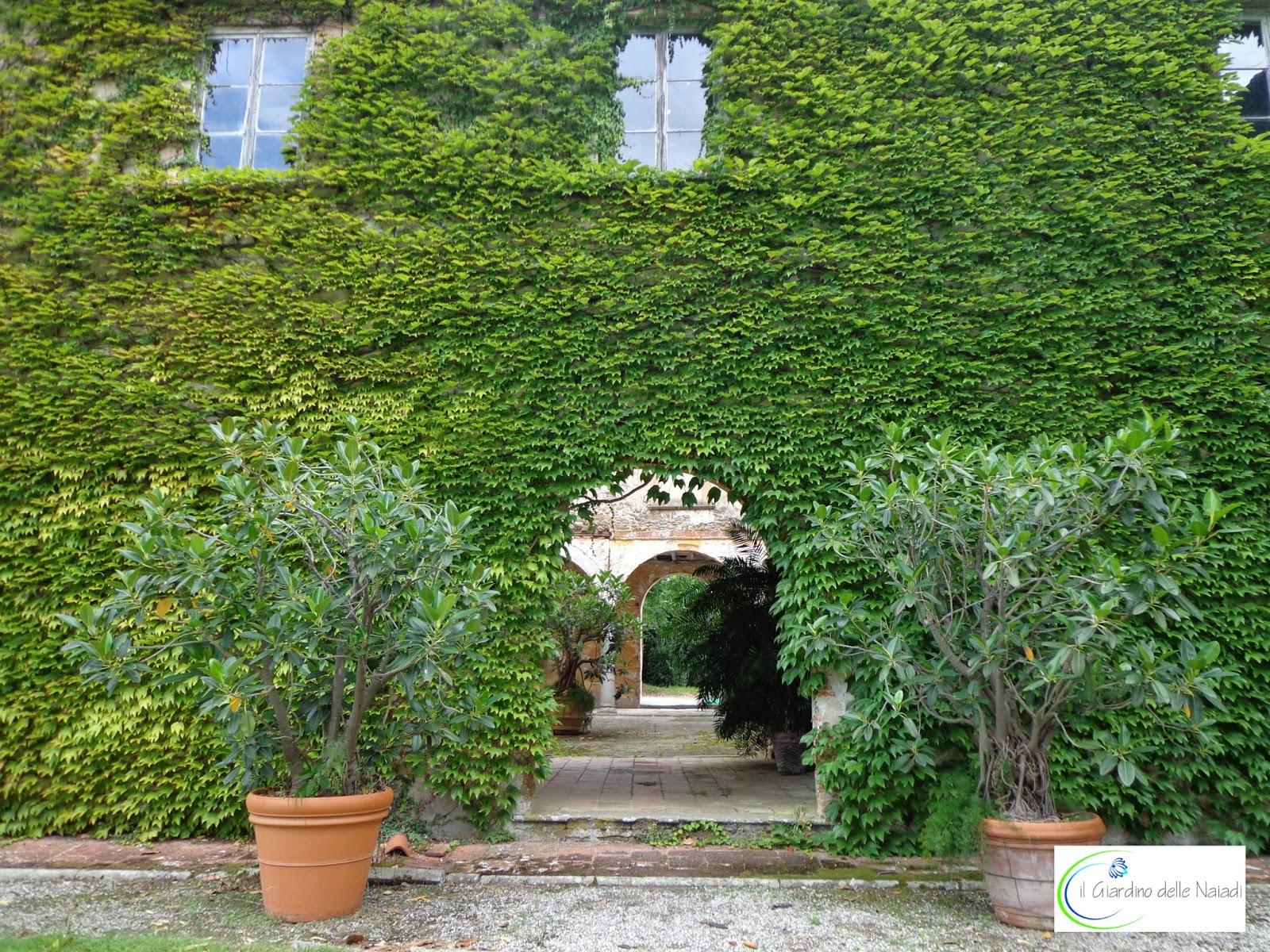 il giardino delle naiadi soluzioni architettoniche verde