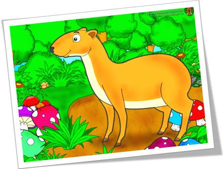 Gambar Gajah Dan Kancil