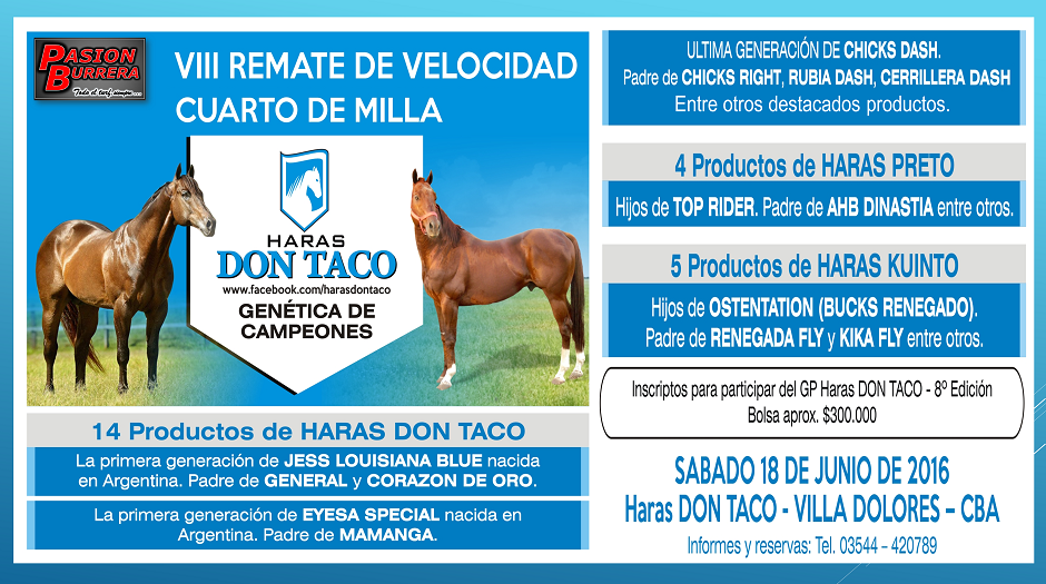 REMATE HARAS DON TACO