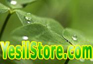 Satılık organik ürün alışveriş sitesi domaini YesilStore.com