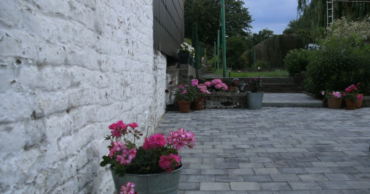 Maison du Chocolat Meu jardim em cor de rosa