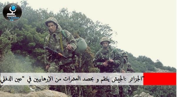 """الجزائر :الجيش ينتقم و بحصد العشرات من الإرهابيين في """"عين الدفلي"""""""