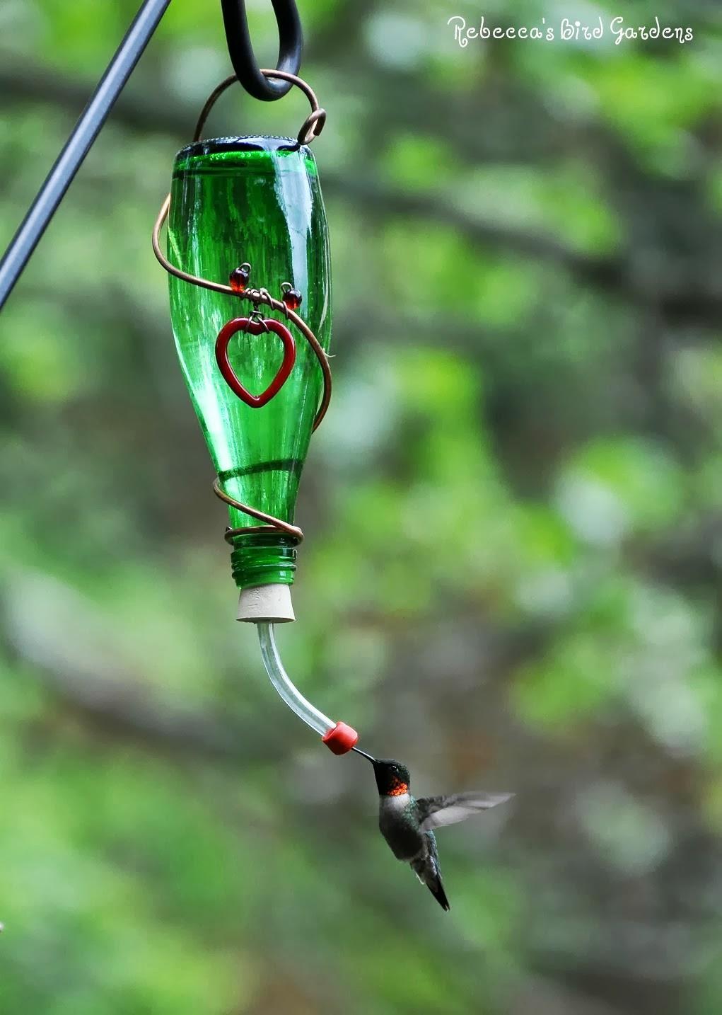 Rebecca 39 s bird gardens blog diy fruit and hummingbird feeders for Diy birdfeeders