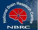NBRC at www.freenokrinews.com